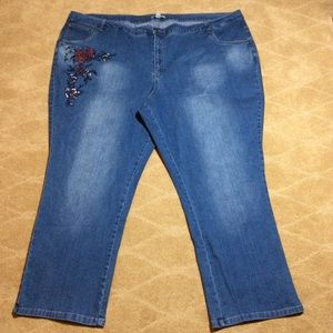 Woman Within NWT Stretch Jean with Embroidery, 32W